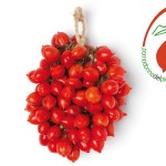 6_Pomodorini del piennolo del Vesuvio DOP